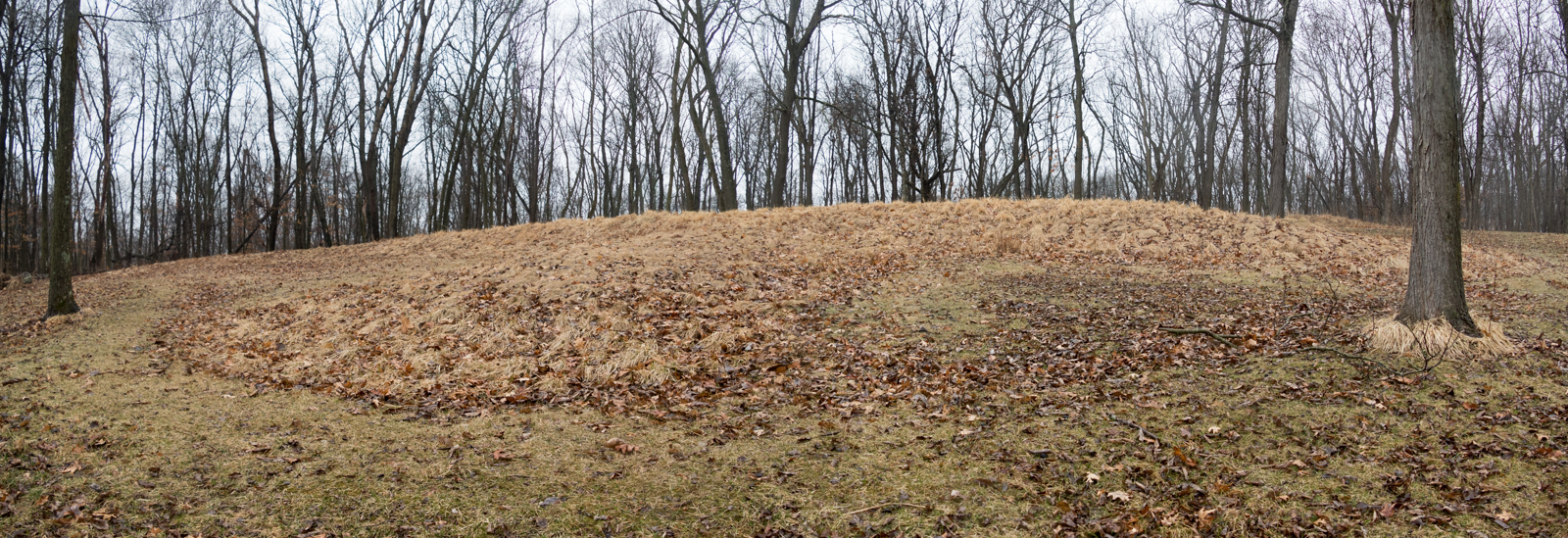 Big Bear Mound in Effigy Mound National Monument in eastern IA