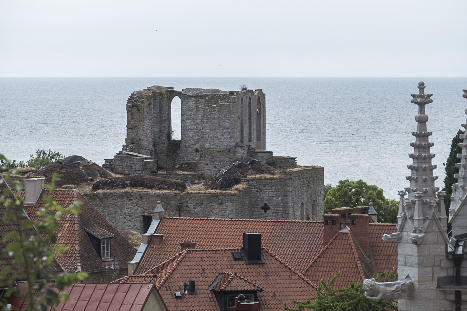 The remains of one of several medieval churches in Visby
