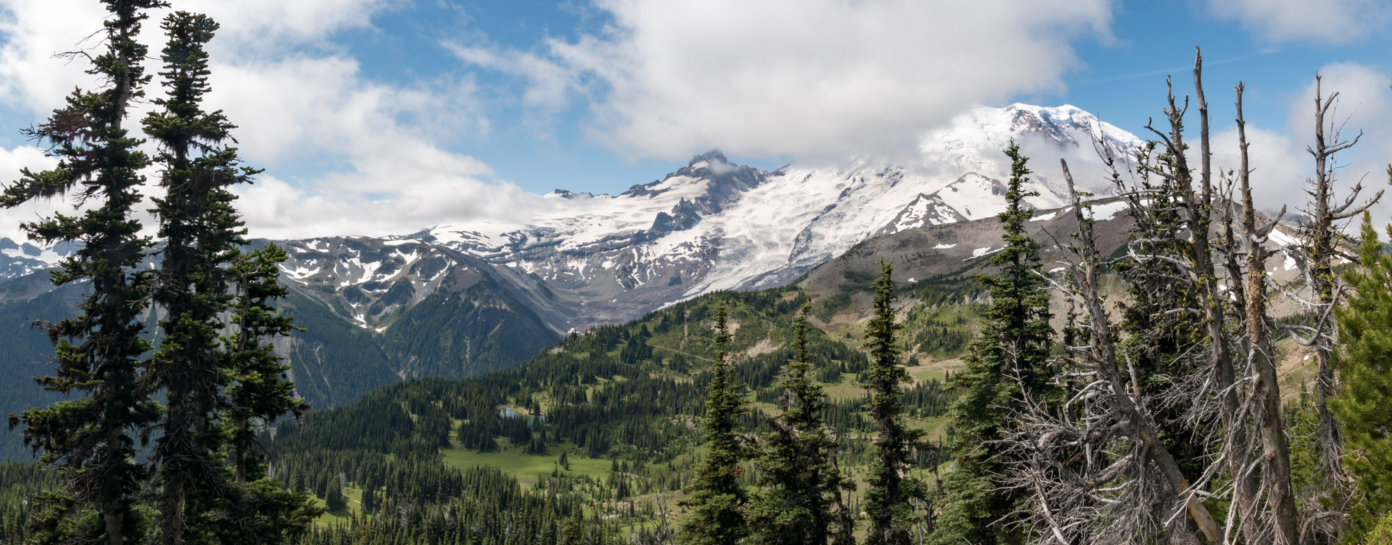 Ranier panorama