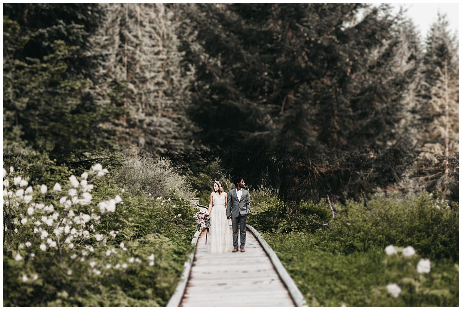 seattle-wedding-photographer-seattle-elopement-photographer-anniezav_0033.jpg