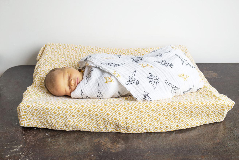 Newborn fotografie Haarlem