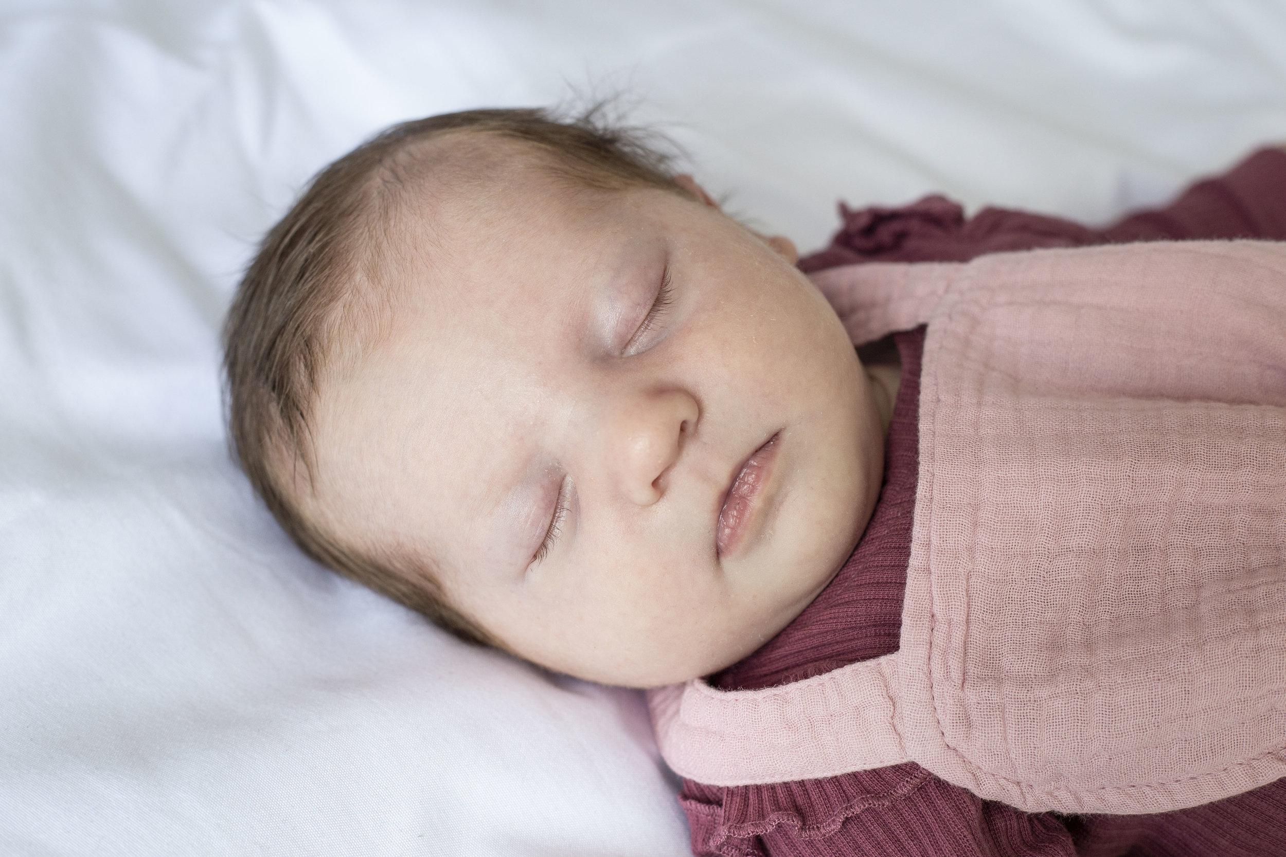 newborn shoot utrecht