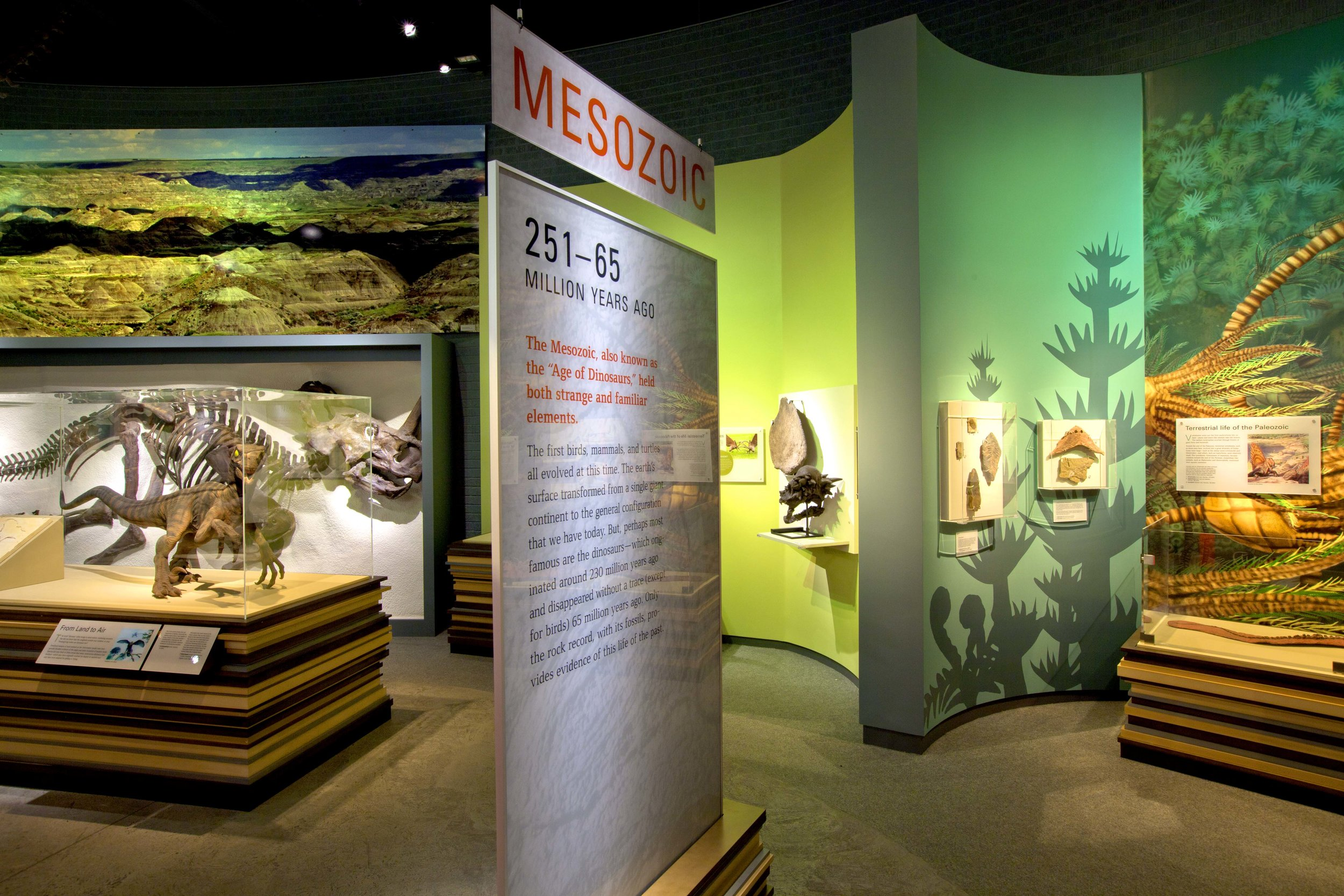 RAYMOND ALP MUSEUM OF PALEONTOLOGY -