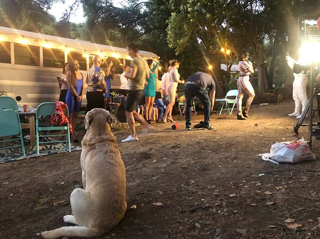 Grazi, are rescue from Mexico, enjoys being a #setdog 🐶 - - #weddingvenue #eventvenue #livemusic #production #music #photo #travel #nature #vacation #airbnb #lifestyle #malibu #losangeles #california #beach #ocean #wanderlust #relax #adventure  #yoga #yogaeverydamnday #yogi #yogalove #yogainspiration #namaste #meditation #lifesourceretreats #themaliburetreat