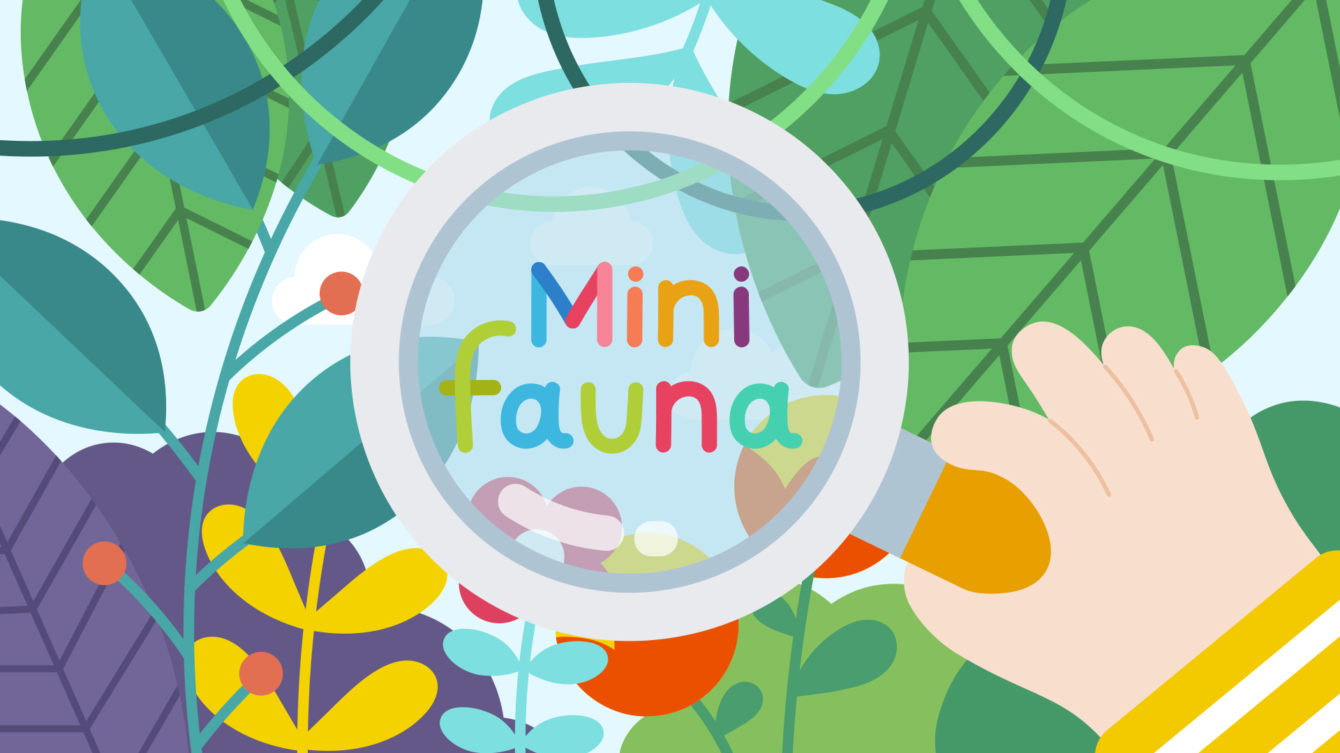 MINIFAUNA - Click for further info
