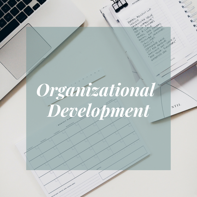 Organizational Development for non profits and small business owners in boca raton florida
