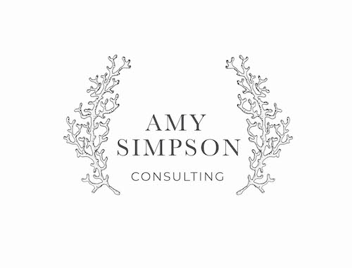 Non profit consulting firm