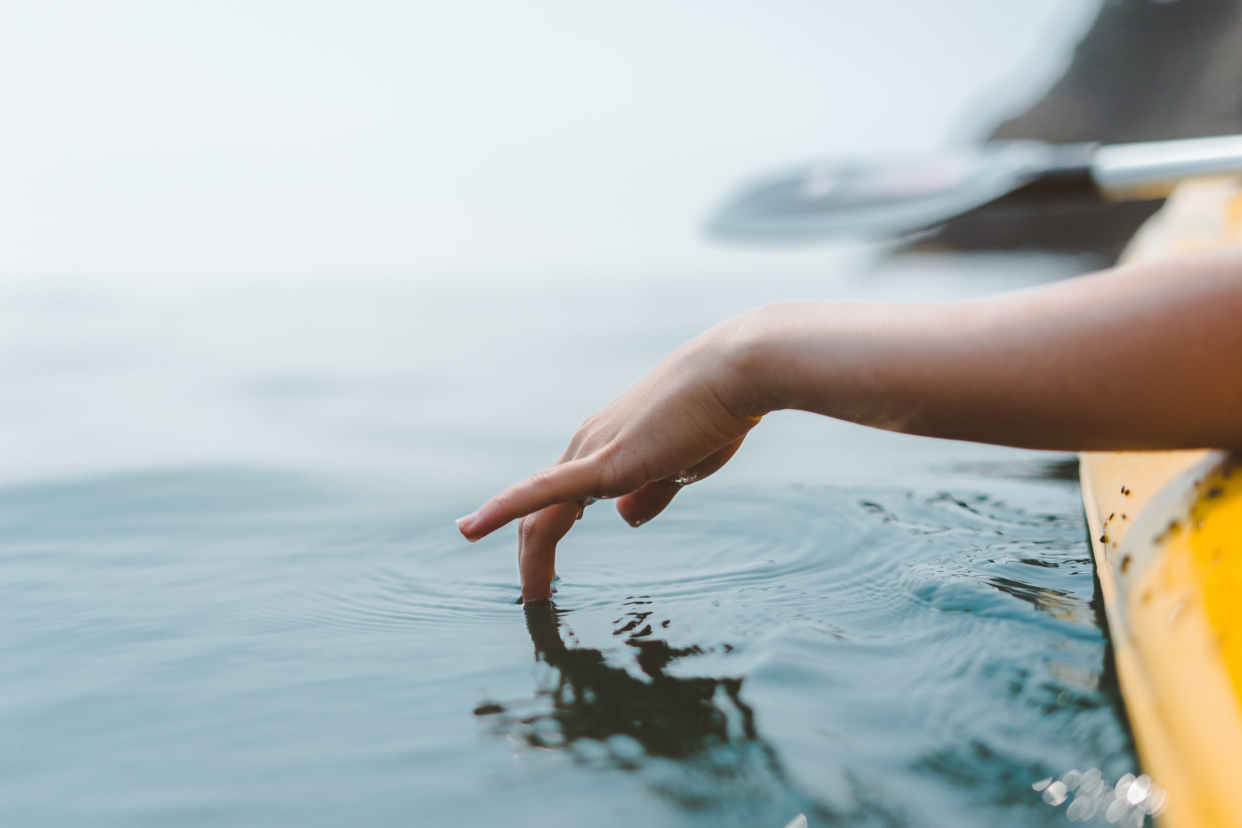 Connecting Americans to the value of water in our lives. -