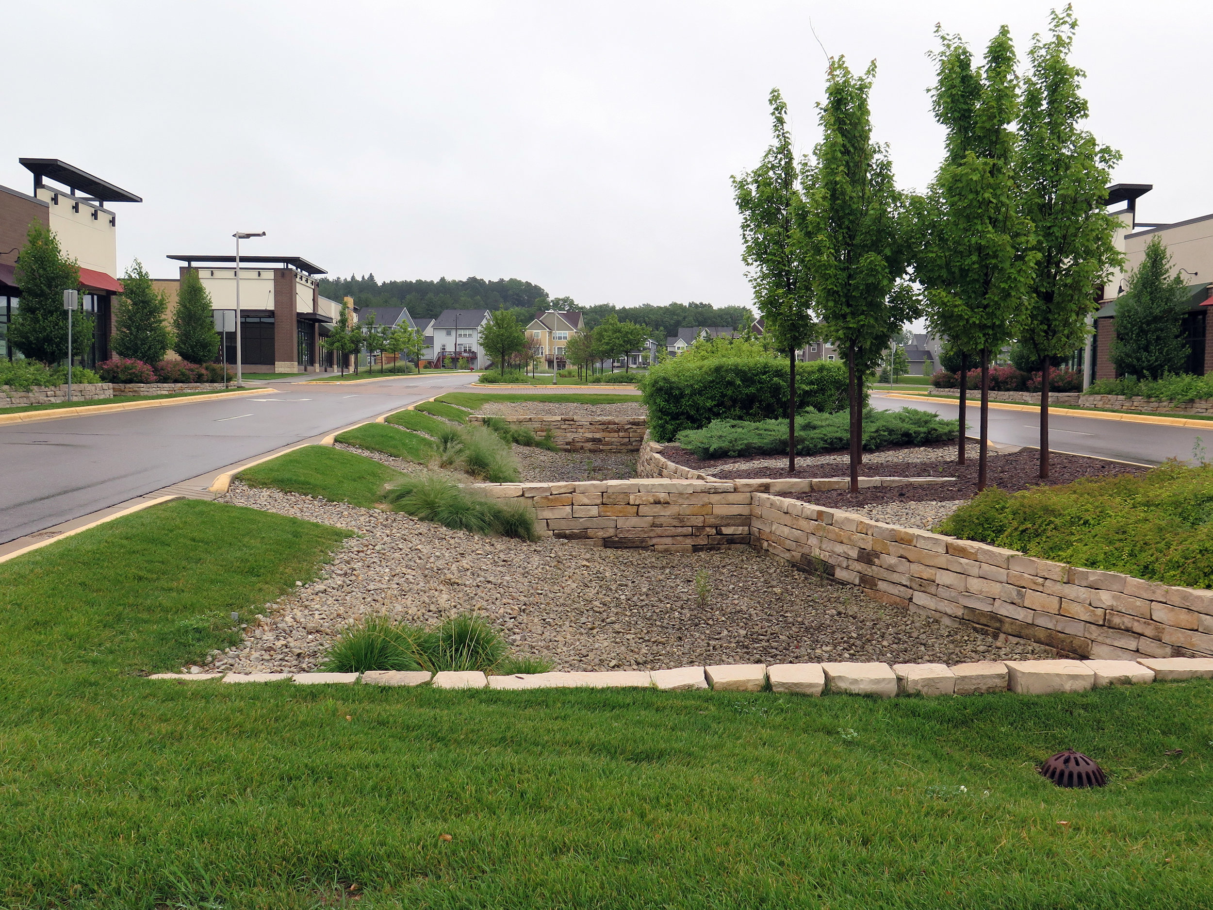 A landscaped median in Inver Grove Heights, MN, doubles as a stormwater collector.  Elizabeth Dunbar | Minnesota Public Radio.