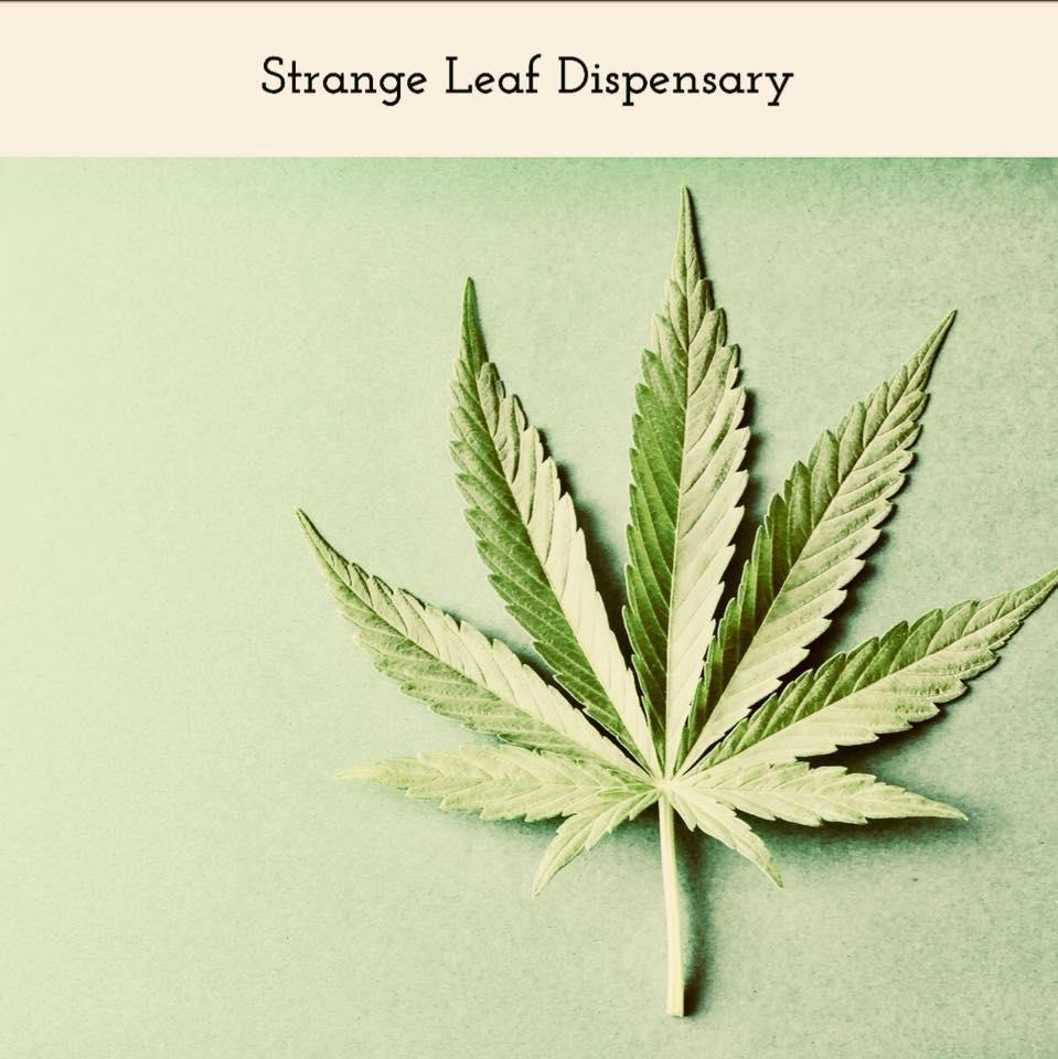 Stange leaf logo .jpg