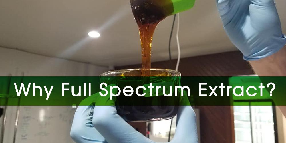 why full spectrum?.jpg