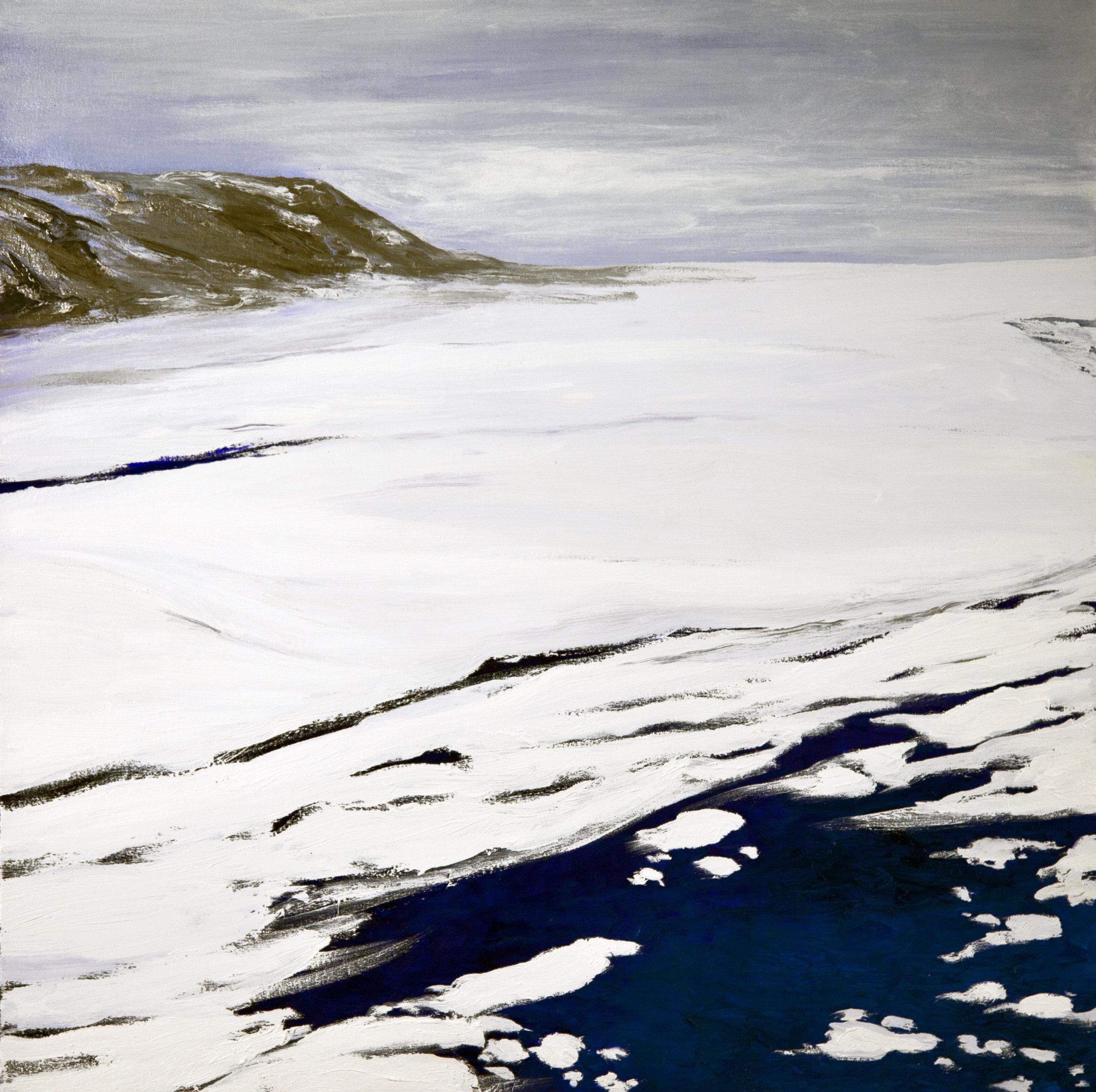 Petermann 2009 (after Diane Burko)