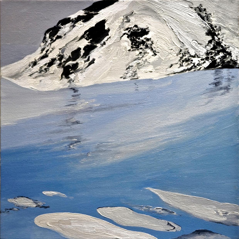 Alaska National Wildlife Reserve Series 2