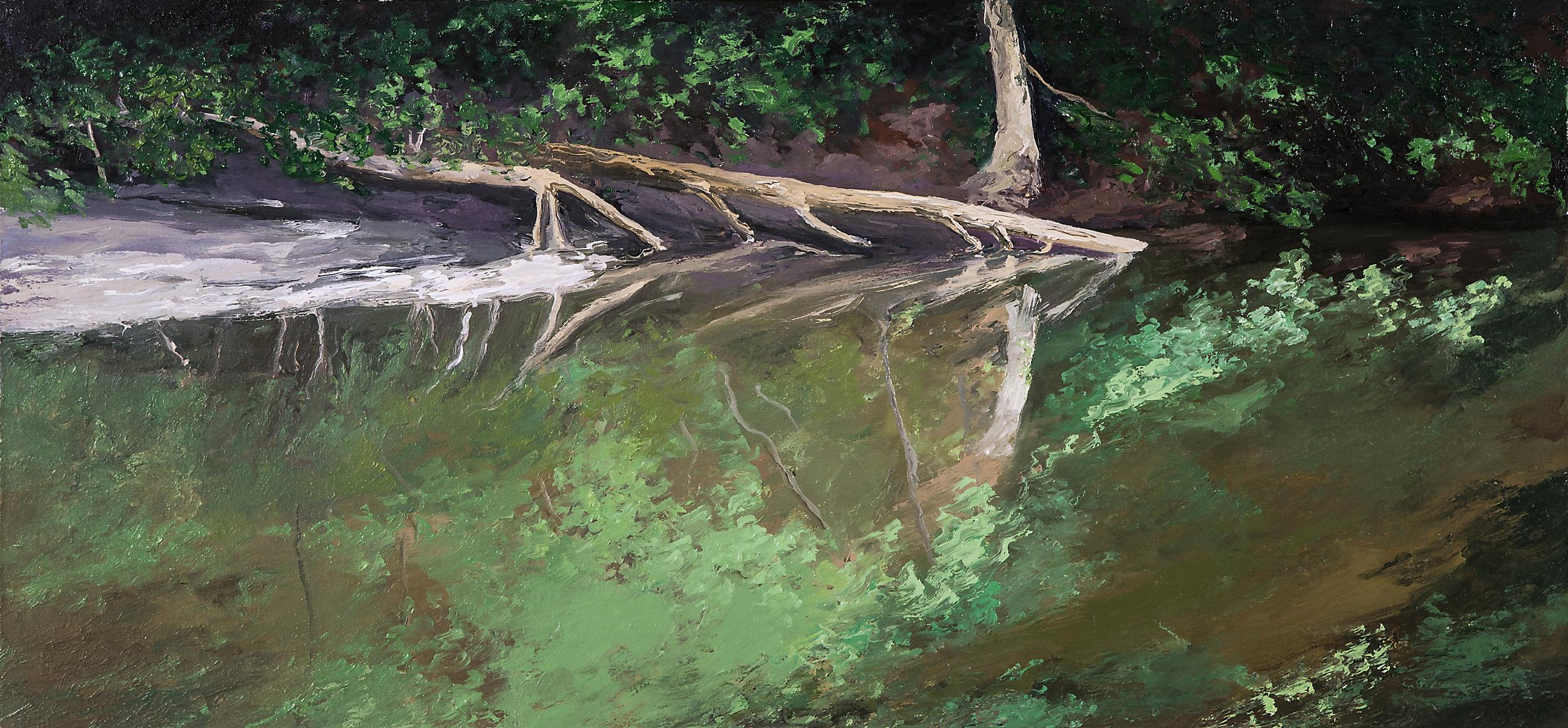Wissahickon Creek Study 2