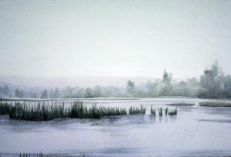 Lagoon of Presque Isle #2 (detail)