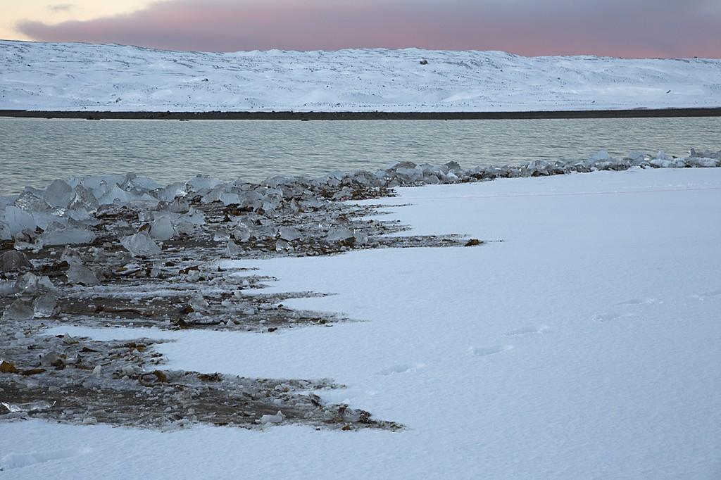 Morning in Krossfjorden