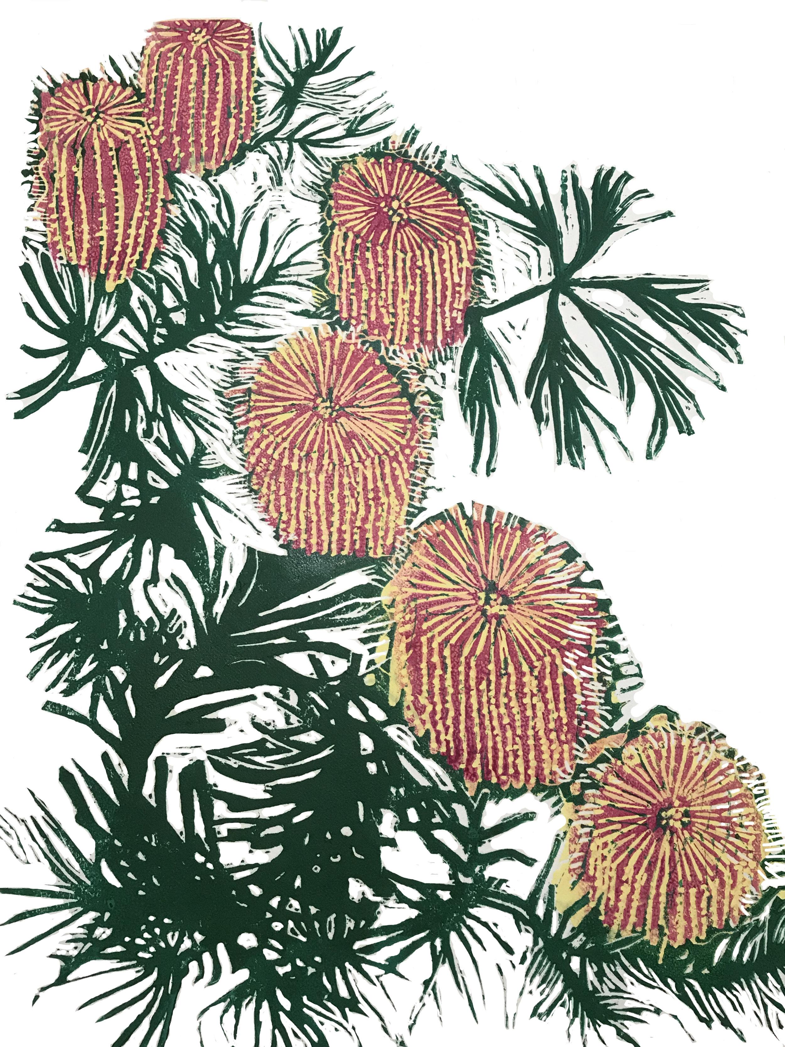 Birthday Candlestick Banksia