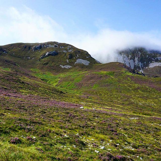 I miss the purple hills.