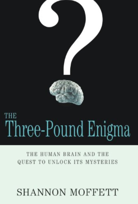 three_pound_enigma_mental_agility_gordon_corsetti.png
