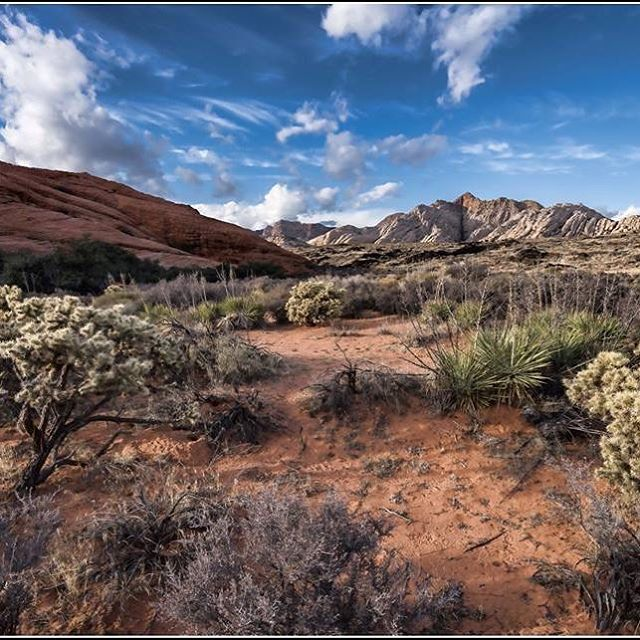 A beautiful metal photograph of Snow Canyon by photographer Charles Hoekman