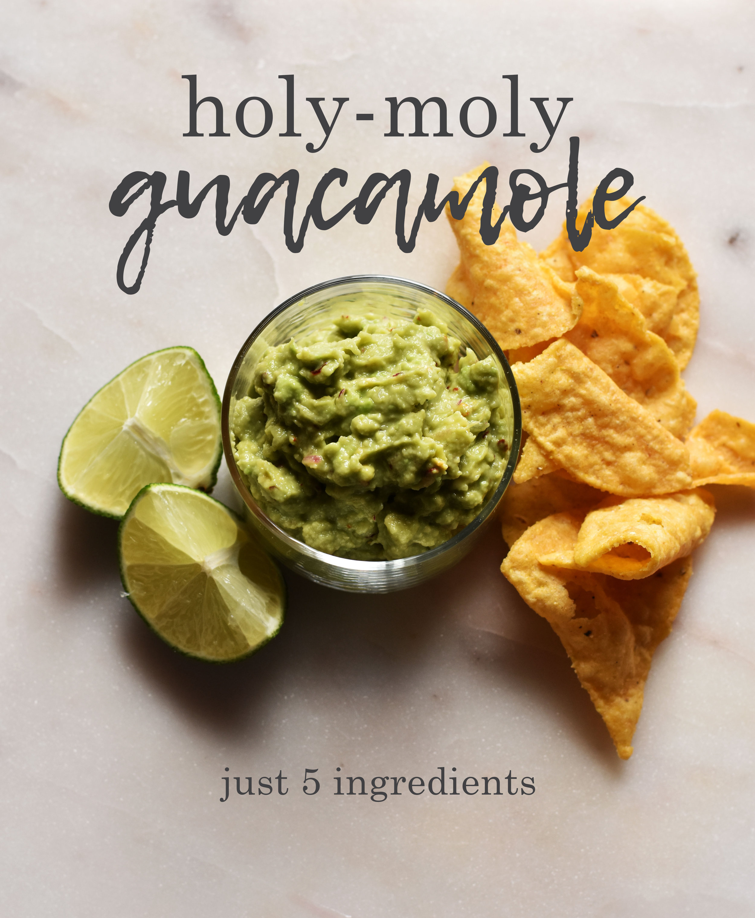 Holy Moly Guacamole Pinterest Graphic.jpg
