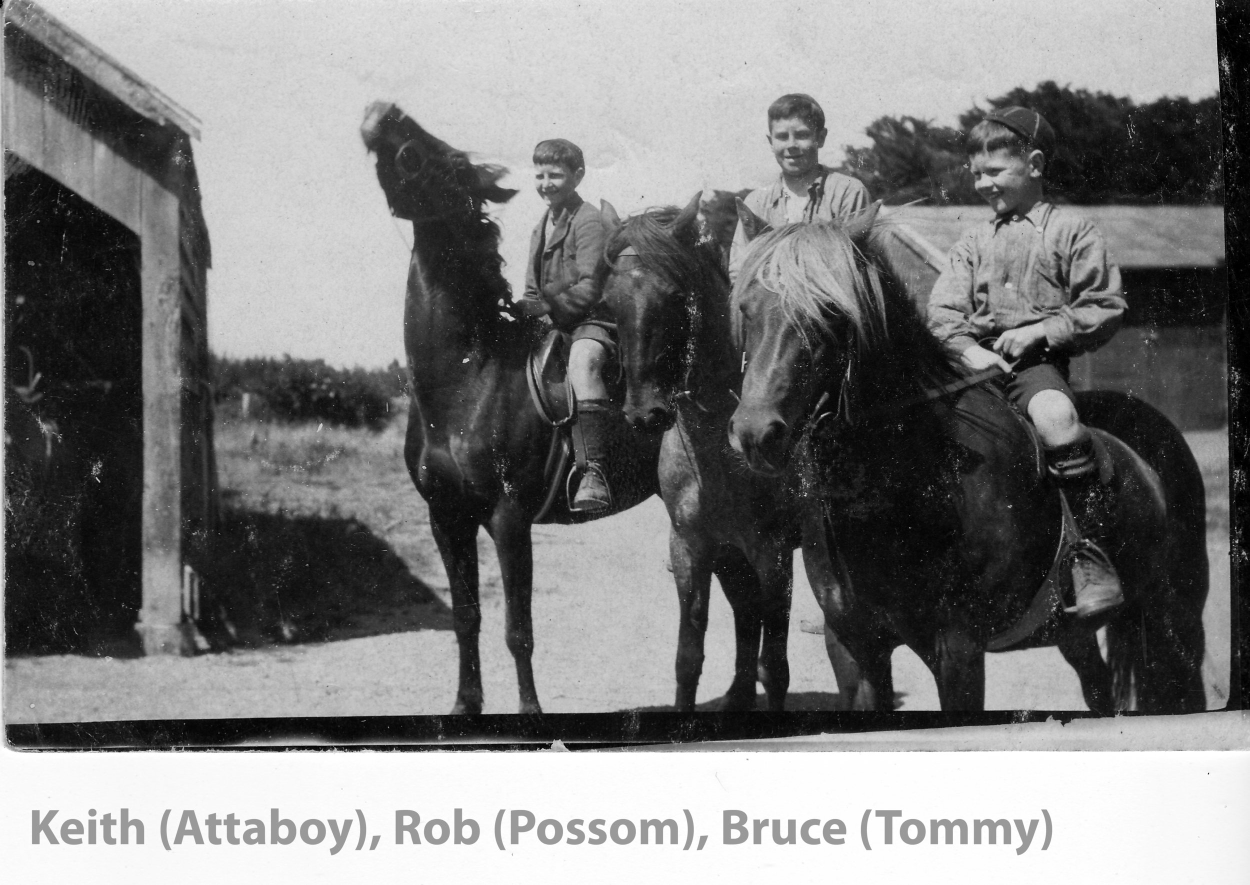 boys & horses copy.jpg