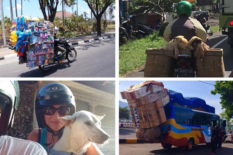 TVOS-Blog-Images-Road Rules.jpg