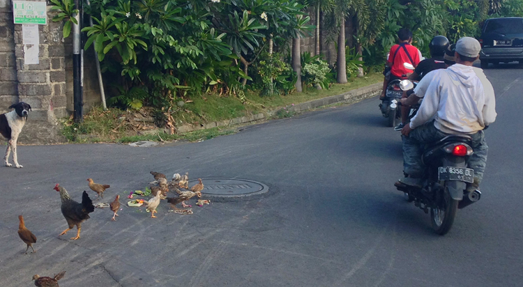TVOS-Blog-Images-Road Rules3.jpg