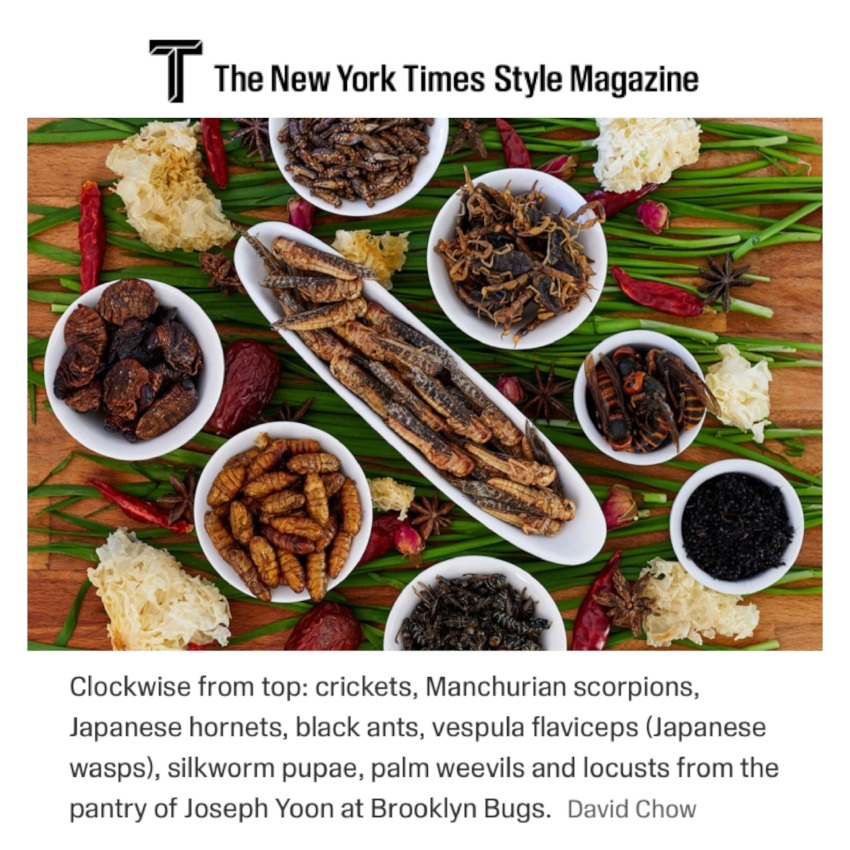 New York Times Style Magazine - We were honored to be selected among three chefs globally to share a recipe featuring #edibleinsects in the New York Times Style Magazine.