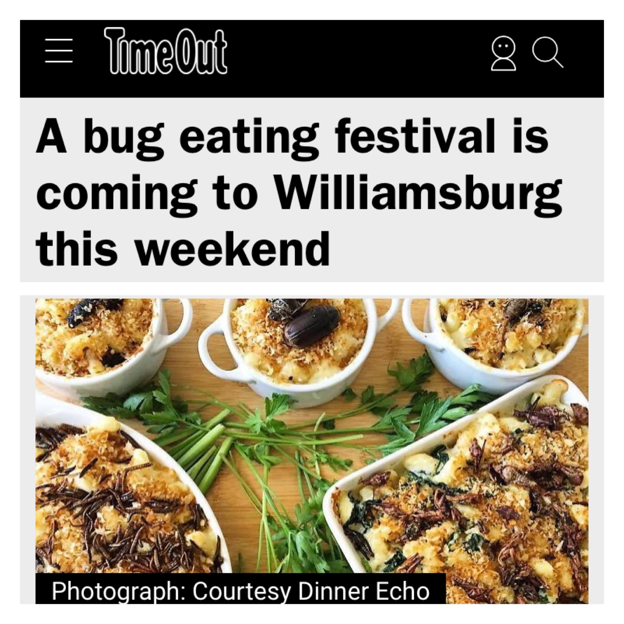 https://www.timeout.com/newyork/blog/a-bug-eating-festival-is-coming-to-williamsburg-this-weekend-082817