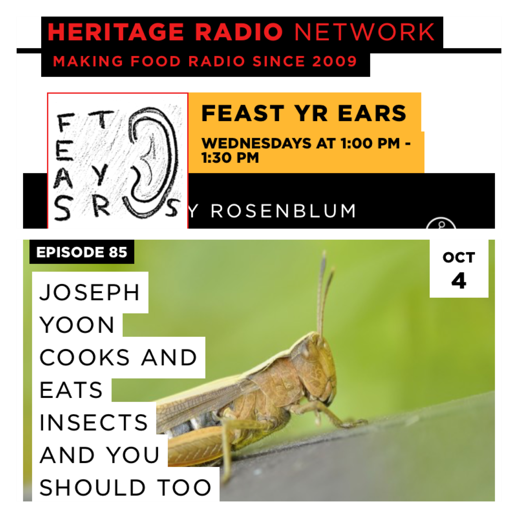 http://heritageradionetwork.org/podcast/joseph-yoon-cooks-and-eats-insects-and-you-should-too/