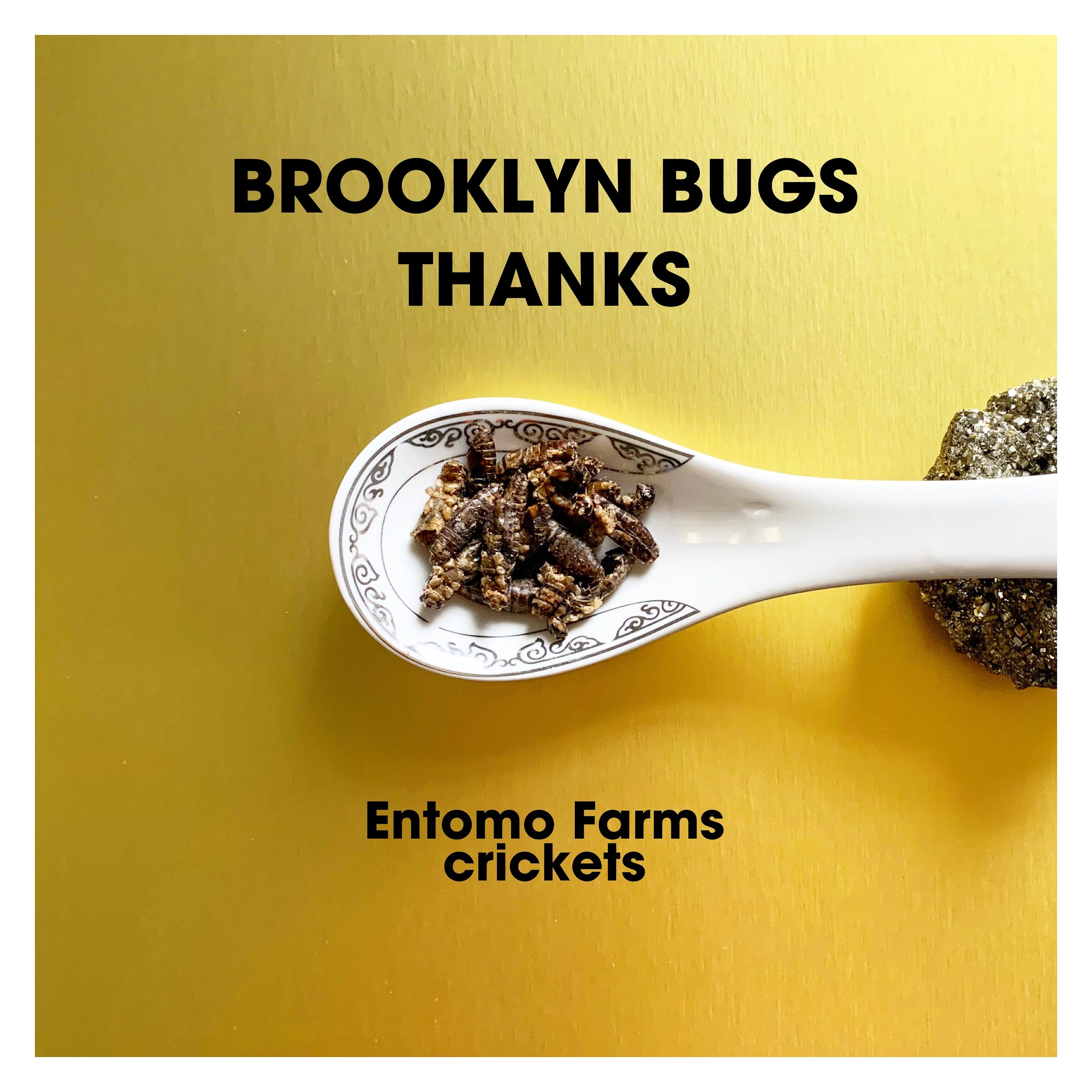 Thanks you - Entomo Farms - Crickets