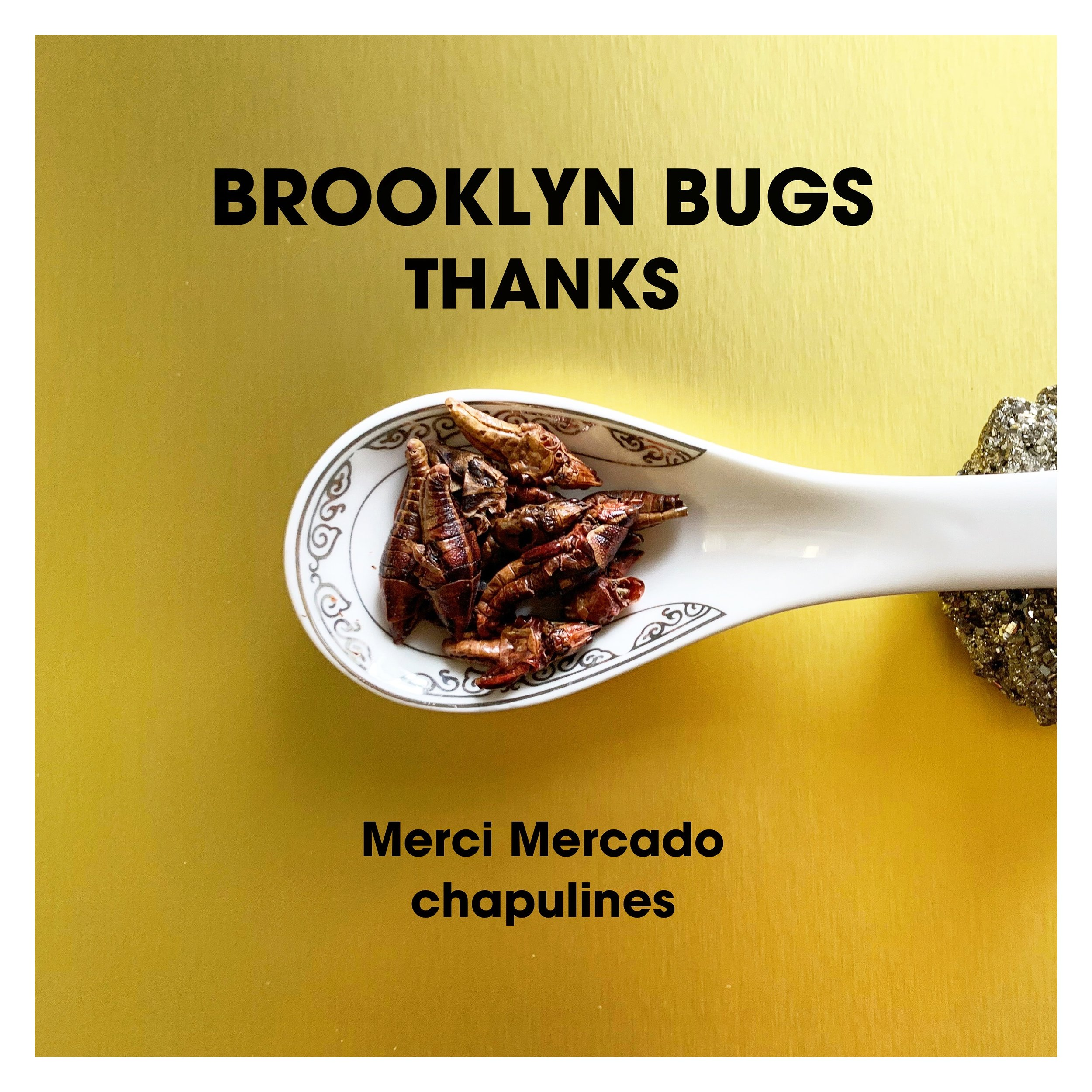 Thank you - Merci Mercado - chapulines