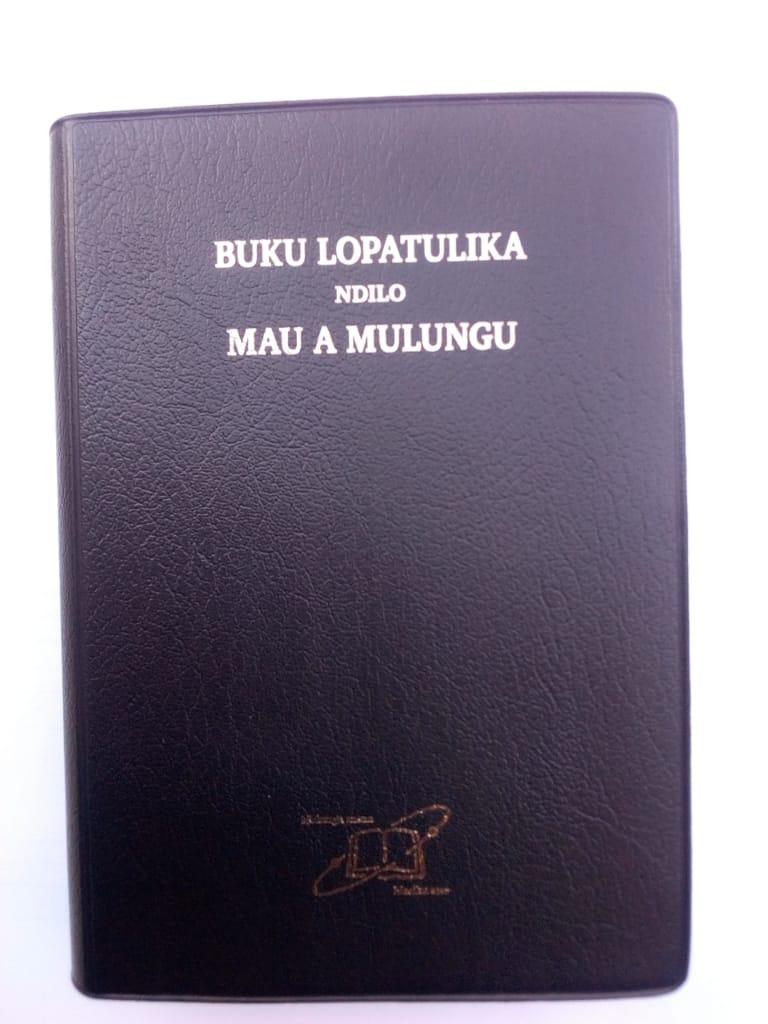 Bibles 6