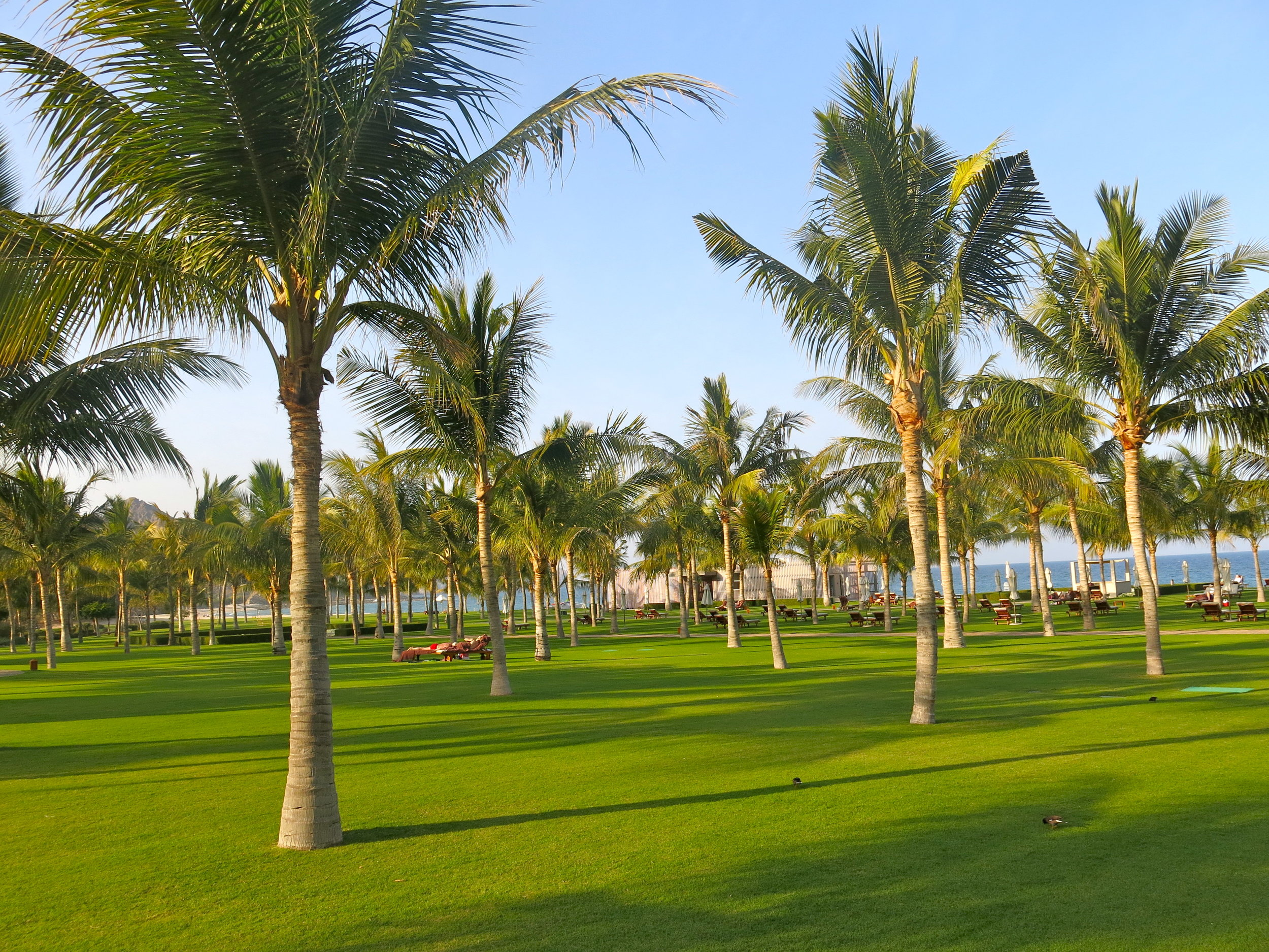 The greens are perfectly maintained and invite to relaxation