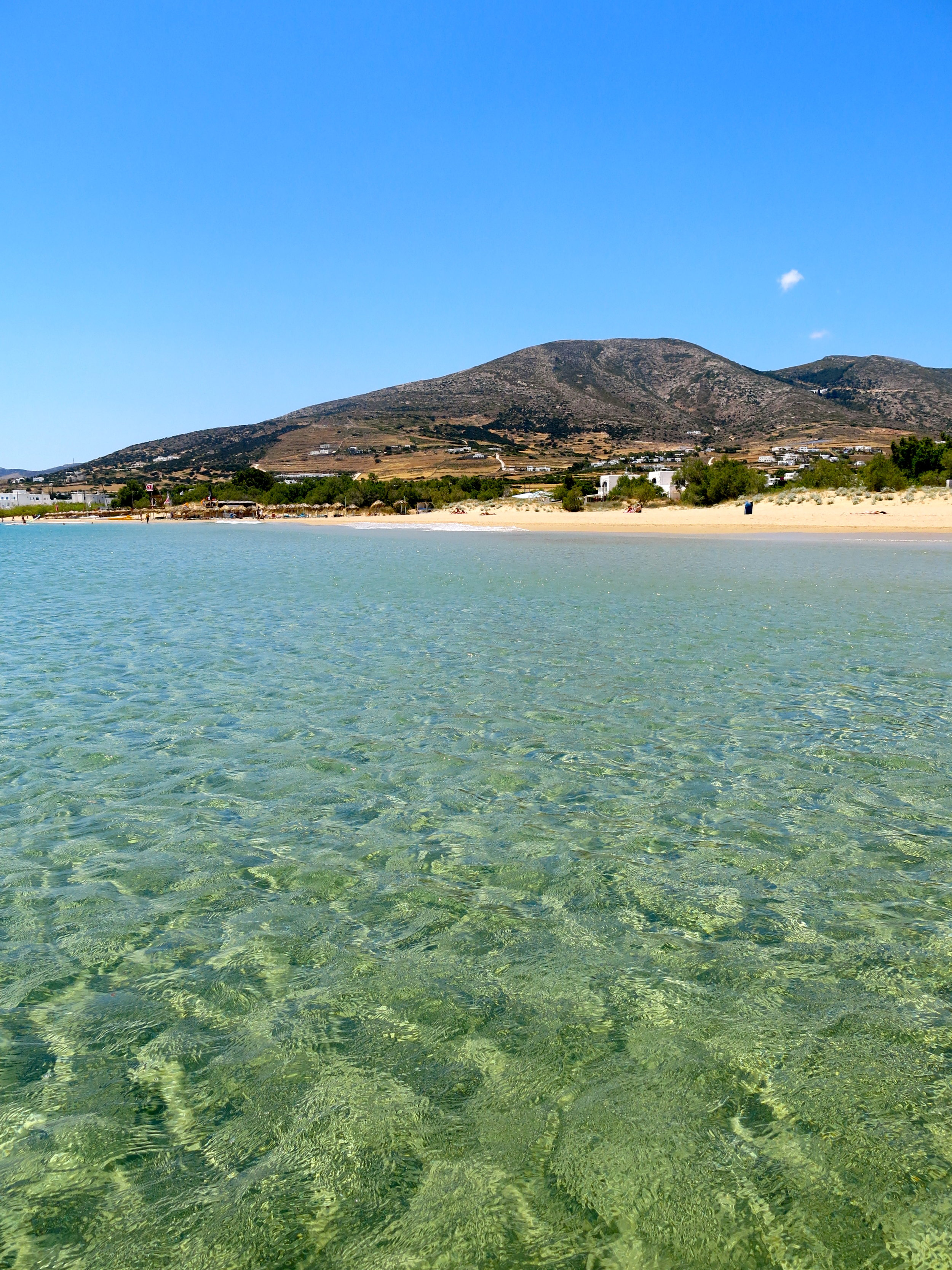 Golden Beach: probably the best beach of Paros and of the Cyclades islands