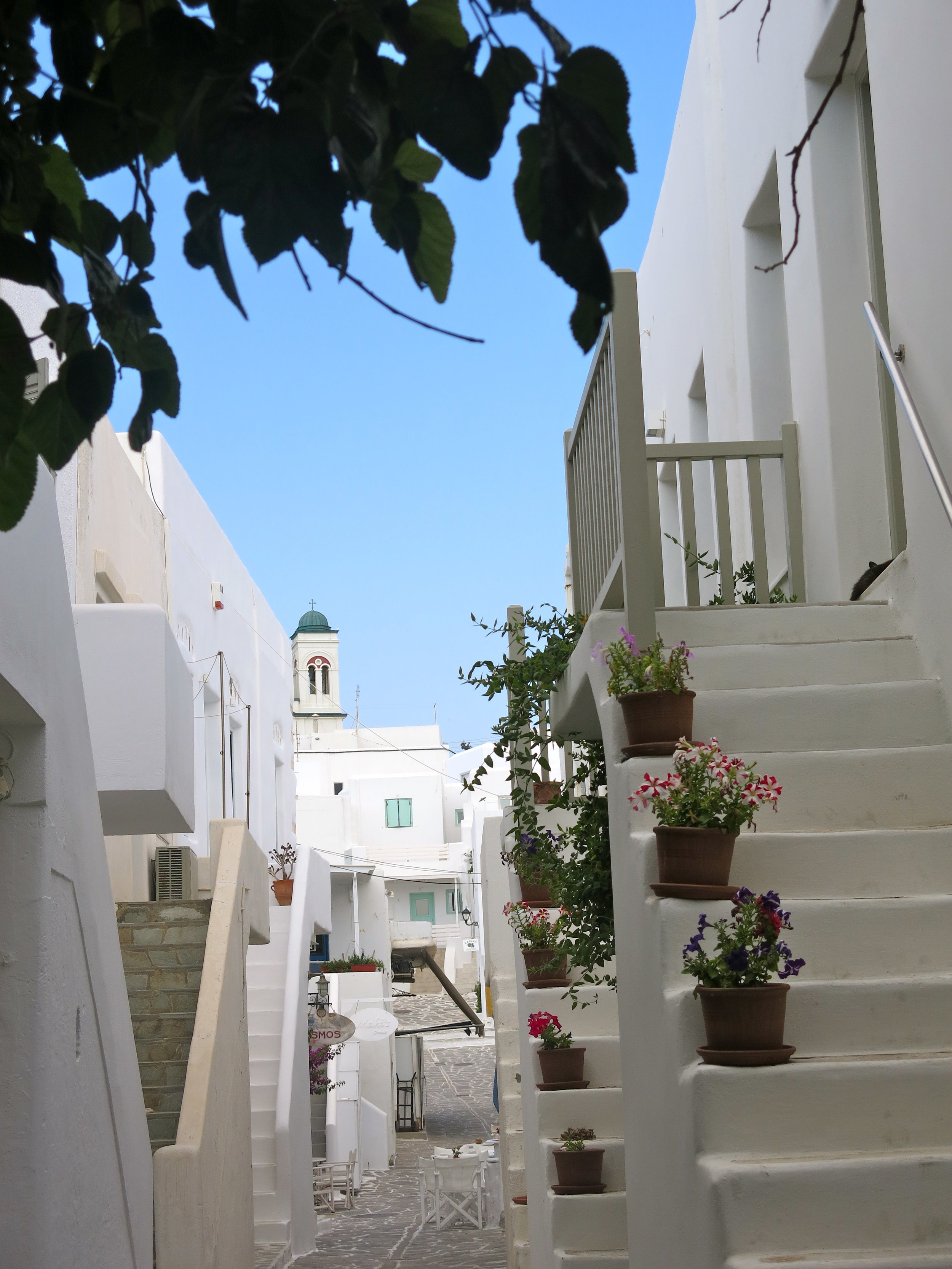 The charming streets of Naoussa near the fishing harbor