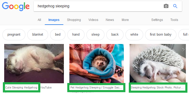 Google Images spot the image optimisation 2