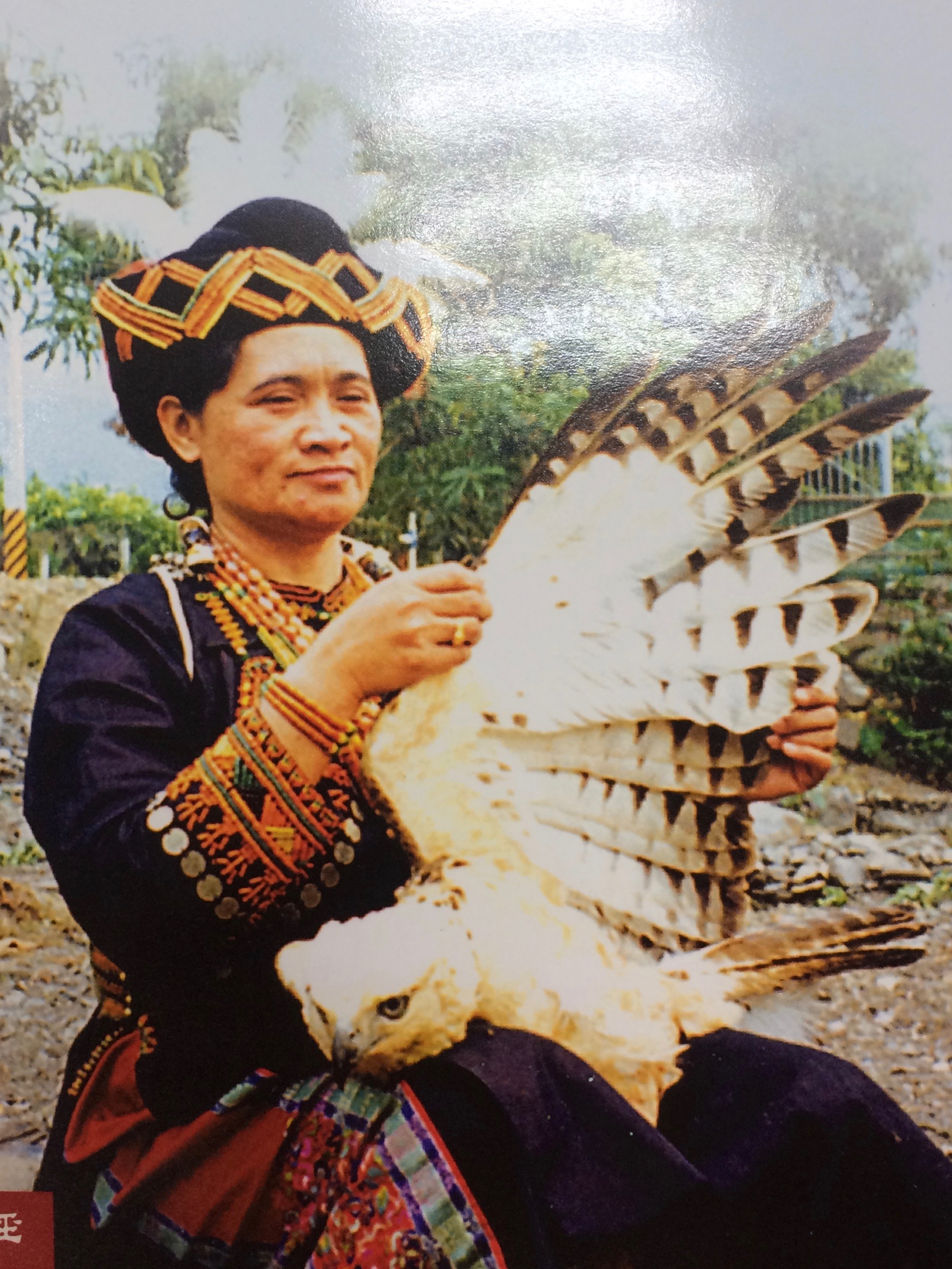 Paiwan tribe member with Mountain Hawk Eagle, photo by ethnographic filmmaker Tai Li Hu