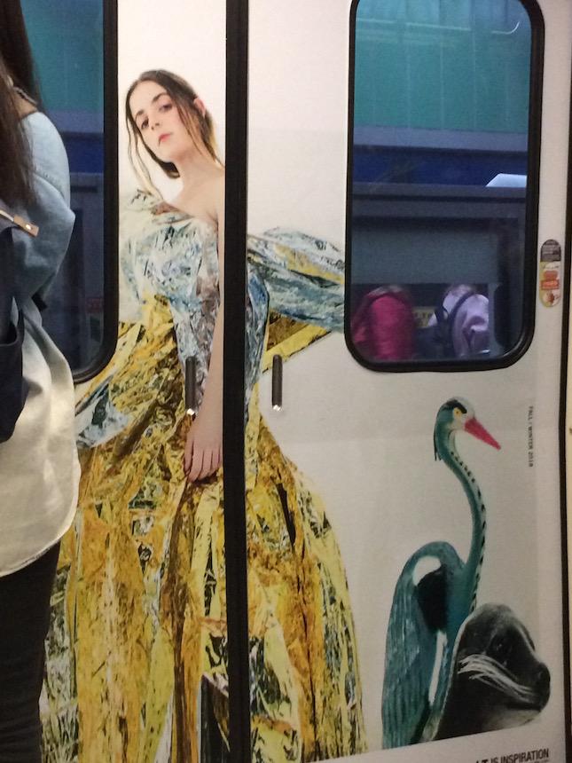 Wordless ads in an MRT subway car highlight Taipei's exotic wildlife