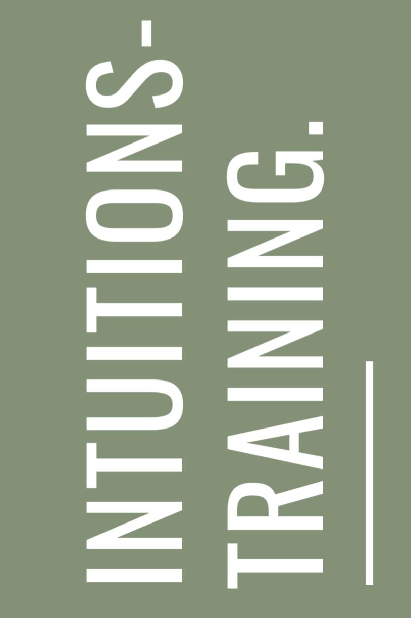 Intuitionstraining