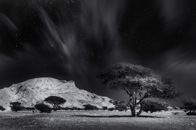 Arid landscape