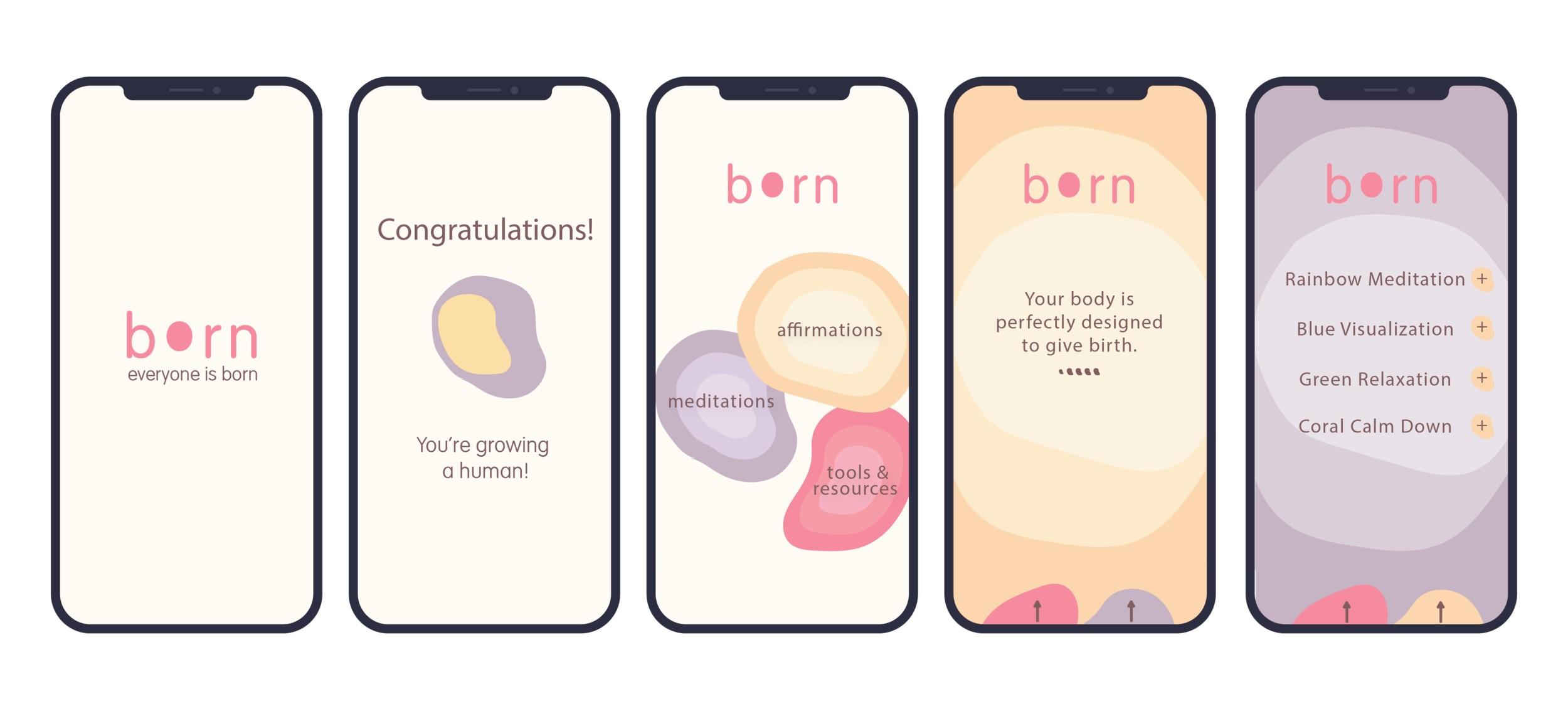 born+app+layout-01.jpg