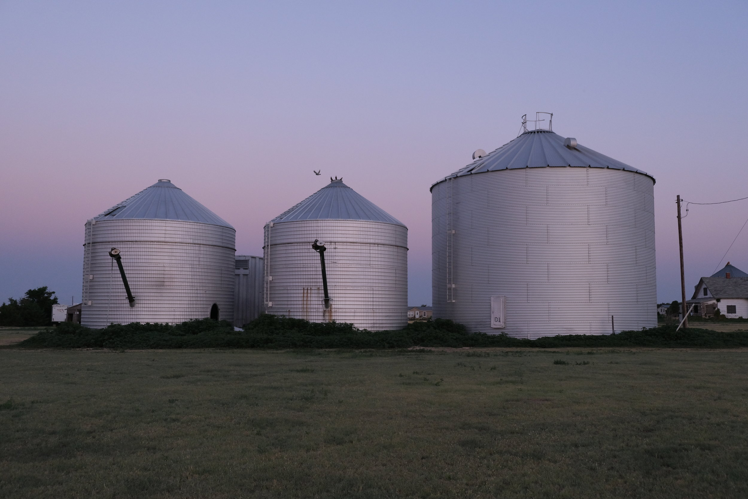 The prettiest these grain silos will ever look