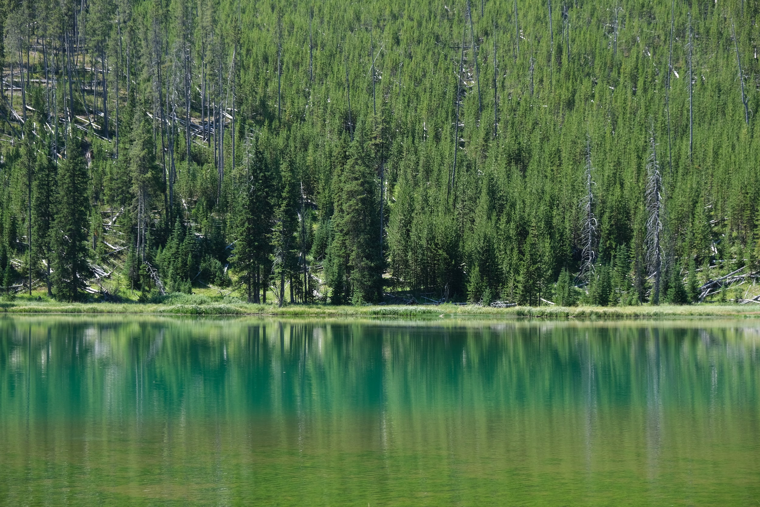 In Yellowstone, even lakes have colour gradients