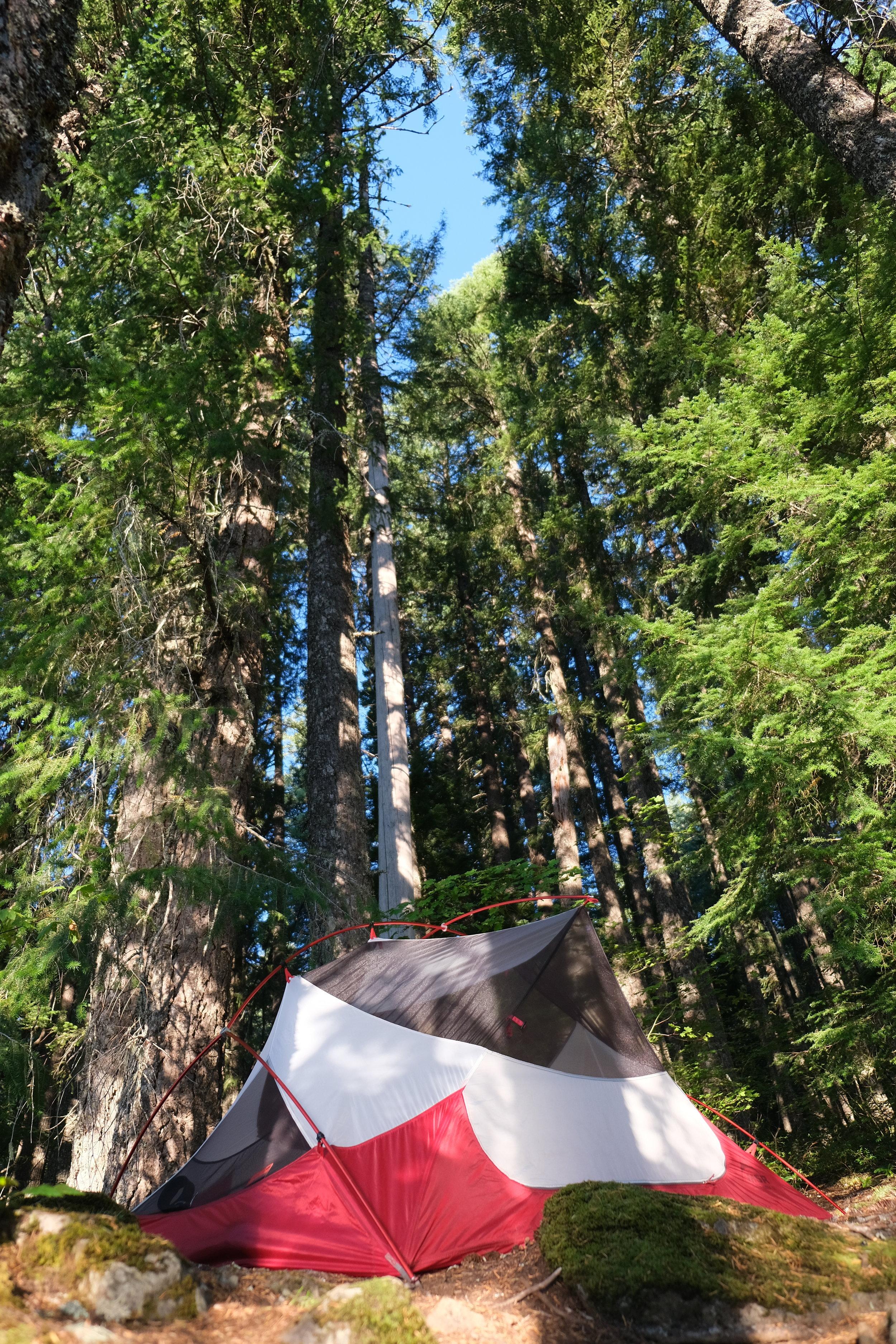 An OK camp spot, on balance