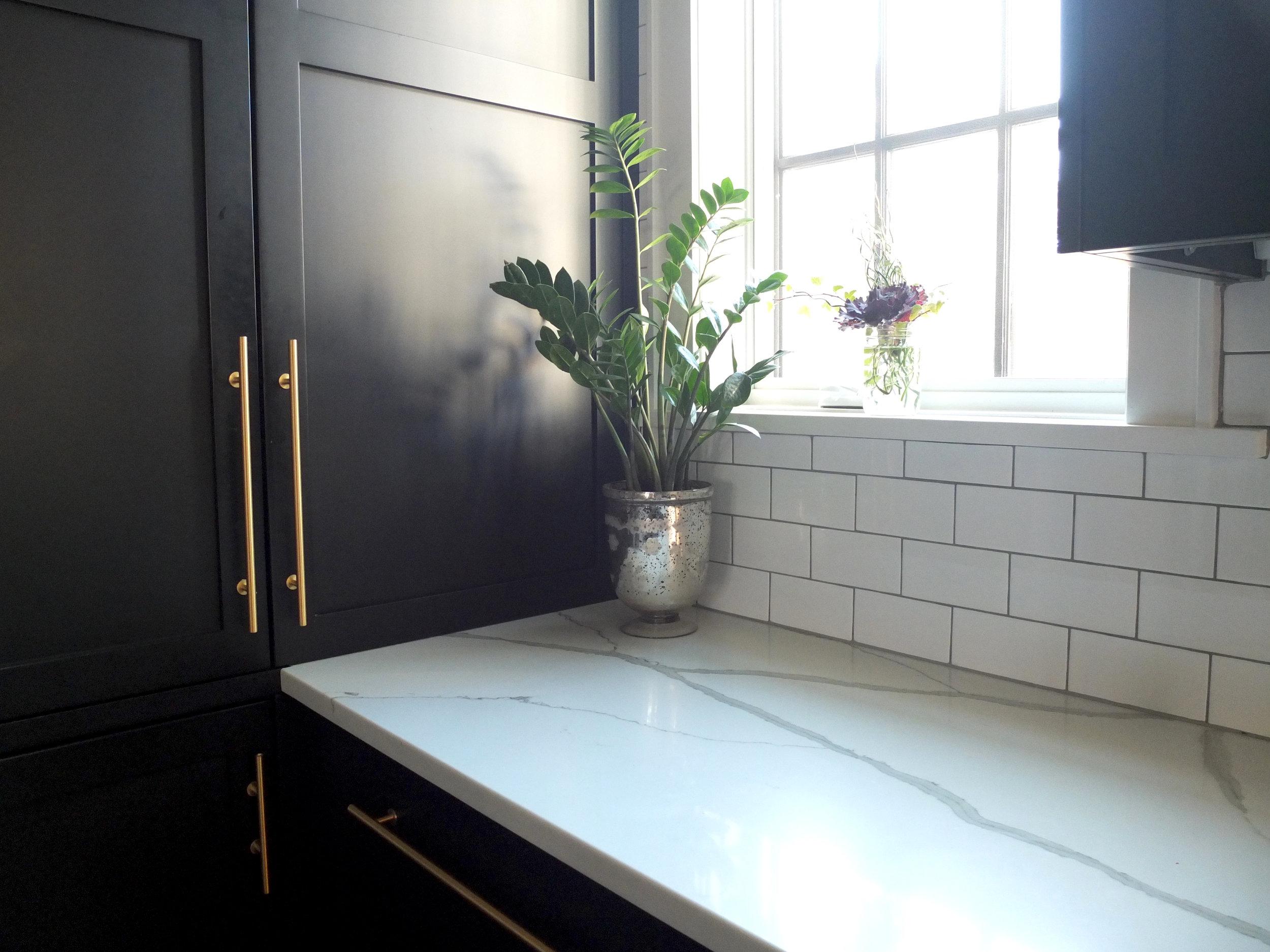 Kitchen_Pantry_Detail_DSCF0841 copy.jpg