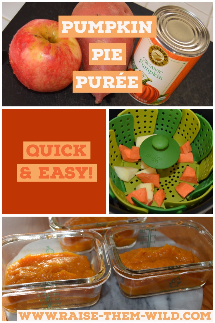 Quick & easy pumpkin pie puree your baby will love!