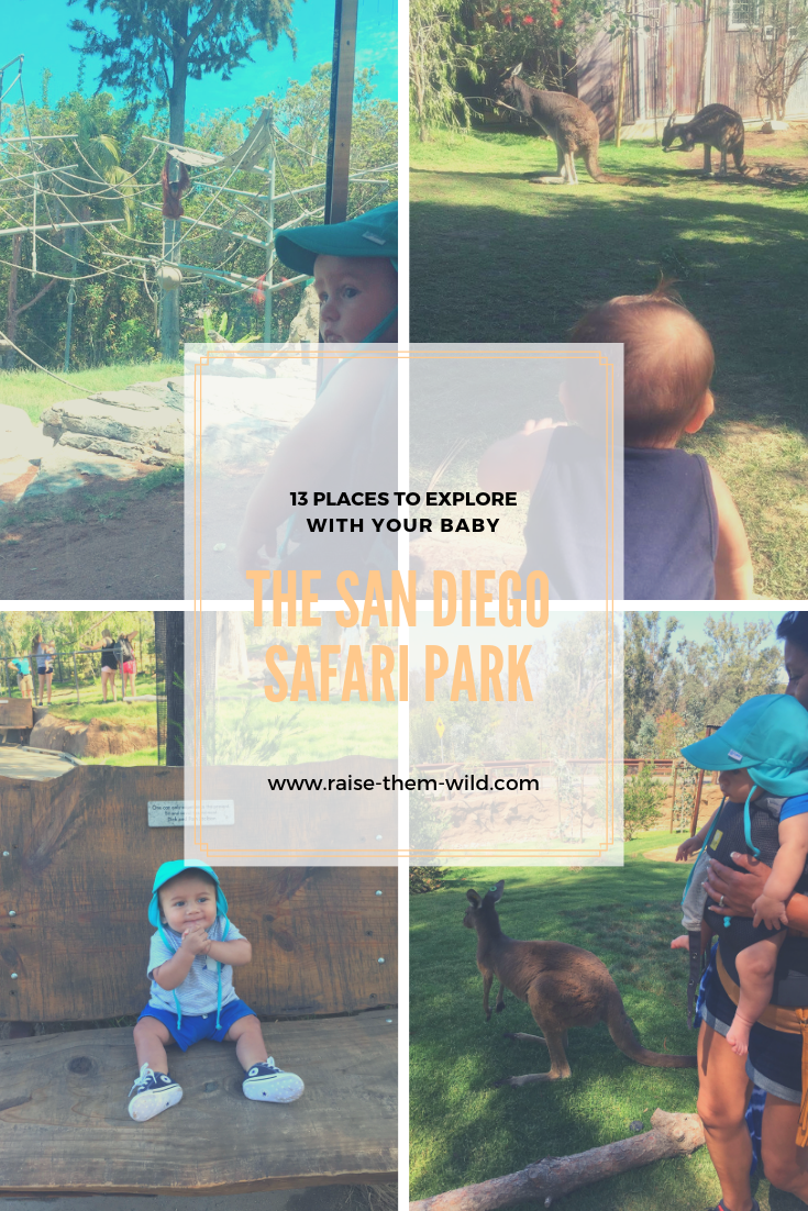 13 places to explore with your baby: The San Diego Safari Park