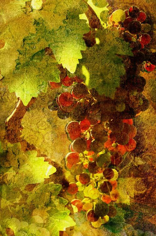 Autumn Lights 06